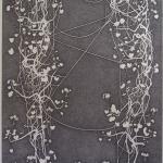 geranium meteoor 44 - 136x271cm - pen op papier - 2014