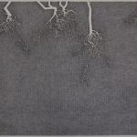 geranium - meteoor 47 - 96,5x66,5cm - pen op papier - 2014