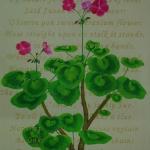 geranium-richard-brinsley-sheridan-73x93cm-2012
