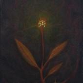 nachtlamp - olieverf op doek - 80x88cm