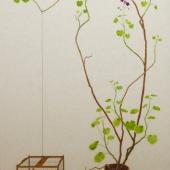 frans vogelkooitje - 118x188cm - olieverf op doek