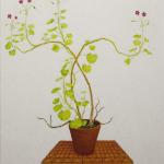 cora's geranium - 80x88cm - olieverf op doek