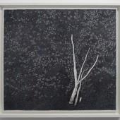 geraniumstronk - 57,5x52,2cm - pen op papier - 2014