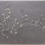 geranium-meteoor 48 - 233x134,5 cm - pen op papier - 2014