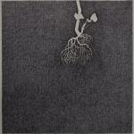 geranium meteoor 49 - 47x48cm - pen op papier - 2014
